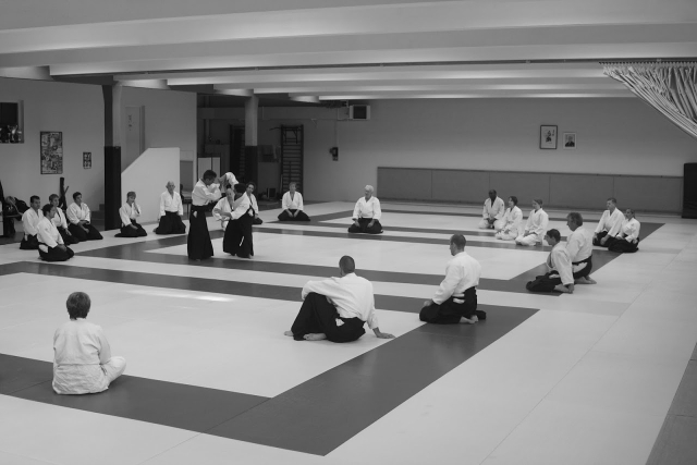 Stages Aikido Melun 2016 2017